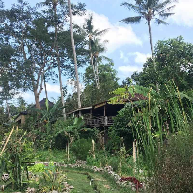 Bali Moksa